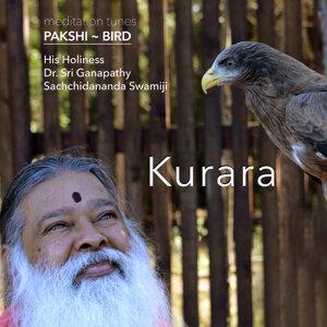 Meditation Tunes - Pakshi / Bird - Kurara