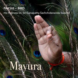 Meditation Tunes - Pakshi / Bird - Mayura