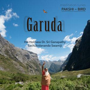 Meditation Tunes - Pakshi / Bird - Garuda