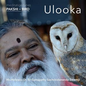 Meditation Tunes - Pakshi / Bird - Ulooka