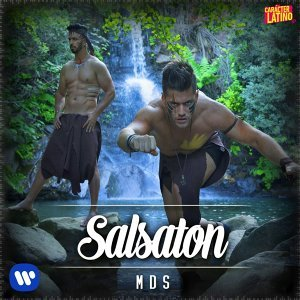 Salsaton