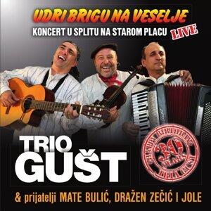 Udri Brigu Na Veselje, 30 Godina - Live Version