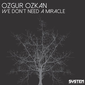 We Don't Need A Miracle