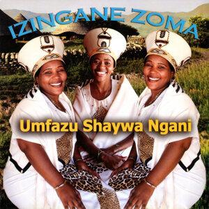 Umfazu Shaywa Ngani