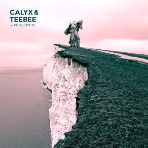 FABRICLIVE 76: Calyx & TeeBee