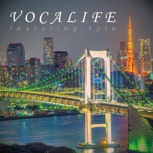 VOCALIFE (抑えておきたい来日アーティスト特集2015~2016) (VOCALIFE)