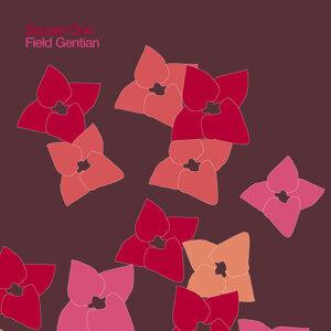 Field Gentian