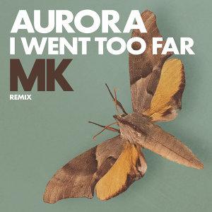 I Went Too Far - MK Remix
