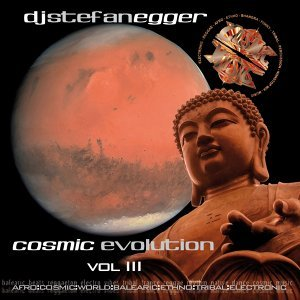 Cosmic Evolution, Vol. 3