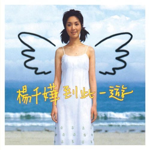 Visit this place (到此一遊) - 華星40經典金唱片