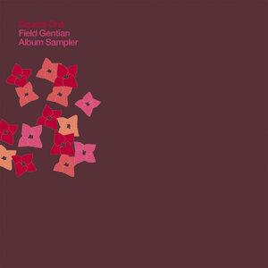 Field Gentian Album Sampler