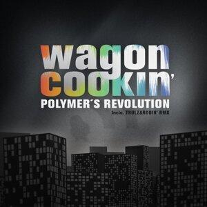 Polymer's Revolution