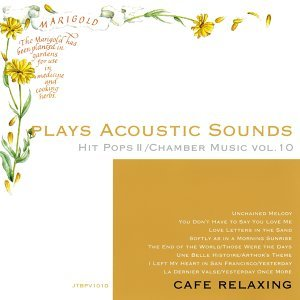 Plays Acoustic Sounds: Hit Pops II, Chamber Music, Vol. 10