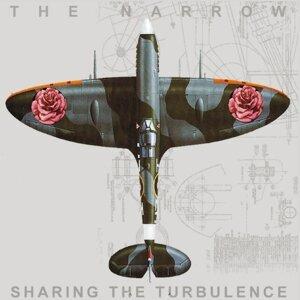 Sharing the Turbulence