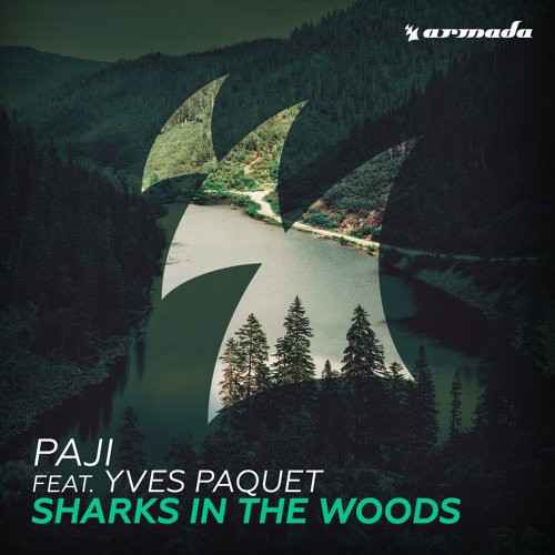 Sharks In The Woods