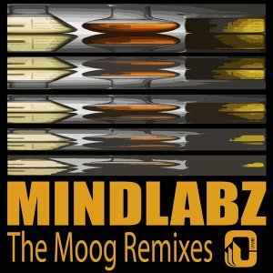 The Moog (Remixes)