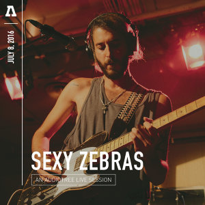 Sexy Zebras on Audiotree Live