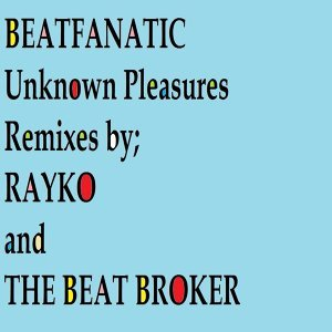 Unknown Pleasures - Remixes 2