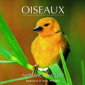 Ambiance Nature Oiseaux