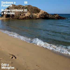 Sardanes a Palamós / Ballant Sardanes a Palamós, Vol. 8 / Vol. 3