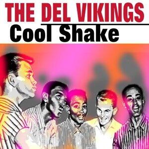 Cool Shake