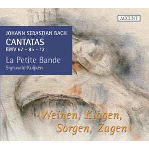 Bach: Cantatas, Vol. 11