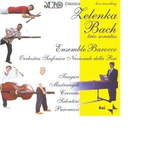 Zelenka Bach trio sonatas