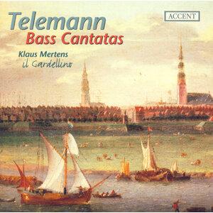 Telemann, G.P.: Bass Cantatas - Twv 1:529, 1:350, 1:928, 1:1724
