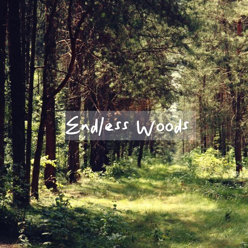 無盡的山林:Endless Woods