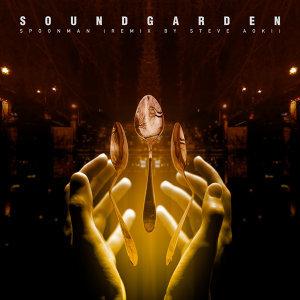 Spoonman - Remix By Steve Aoki