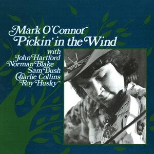 Pickin' In The Wind