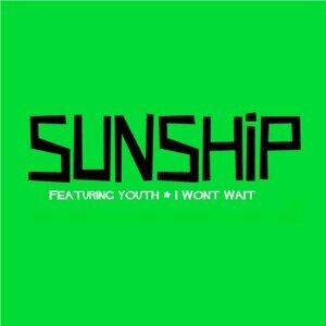 I Won't Wait (feat. Youth)