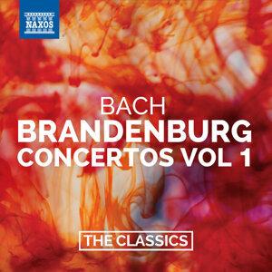 Bach: Brandenburg Concertos, Vol. 1