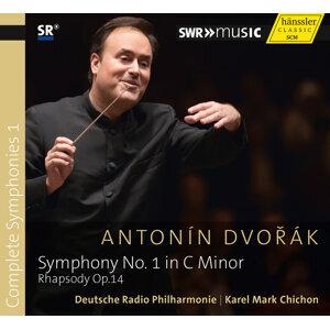Dvořák: Complete Symphonies, Vol. 1
