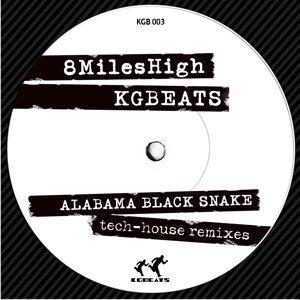 Alabama Black Snake - Tech House Remixes