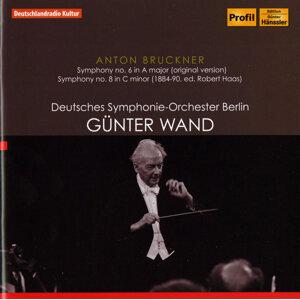Bruckner: Symphonies No. 6 (Original Version) & No. 8 (Haas Edition)