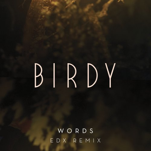 Words - EDX Remix