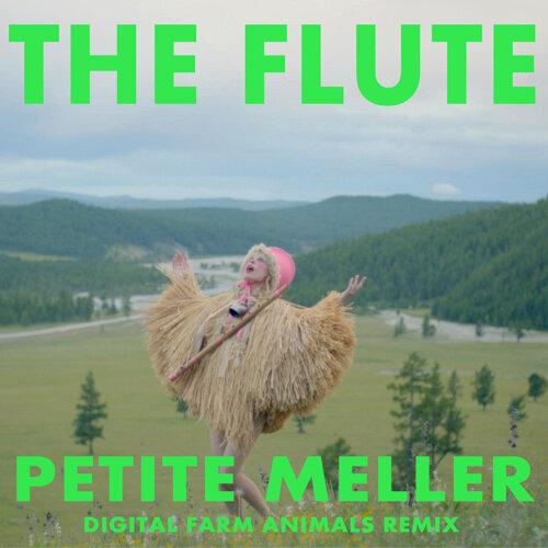 The Flute - Digital Farm Animals Remix