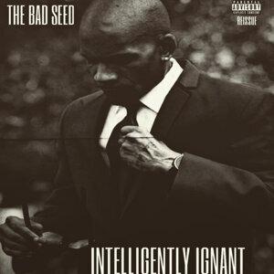 Intelligently Ignant