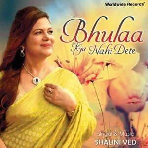 Bhulaa Kyu Nahi Dete