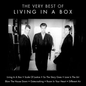 The Very Best of Living in a Box