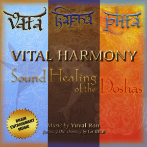 Vital Harmony: Sound Healing of the Doshas