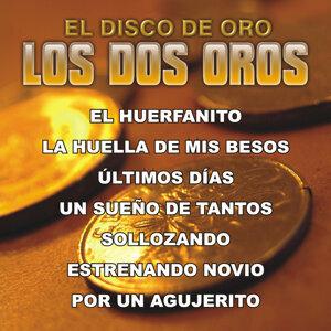 El Disco de Oro