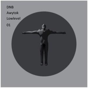 Awytok Lowlevel 01