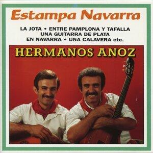 Estampa Navarra