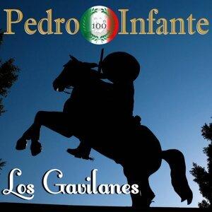 Imprescindibles - Los Gavilanes