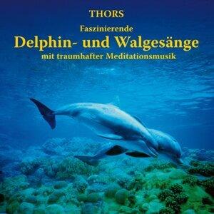 Delphin- und Walgesänge mit traumhafter Meditationsmusik
