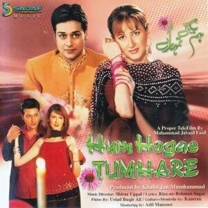 Hum Hogae Tumhare