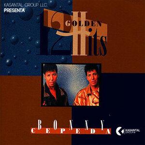12 Golden Hits