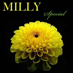 Milly Special